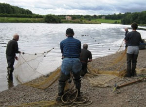 Paxton netting team