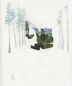 'Cryptic Digger' Collage, watercolour and pencil by Kate Foster Credit: Kate Foster and Forestry Commission.