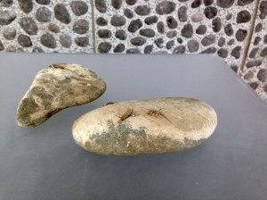 stonelivesdoc2